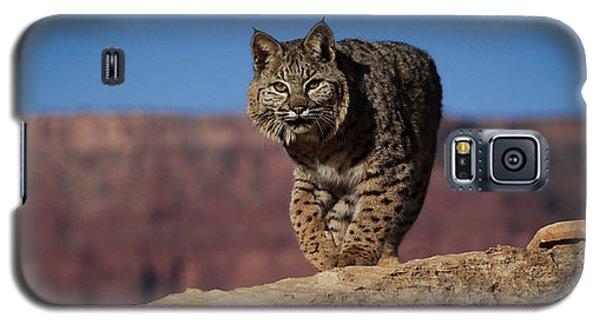 Mr. Bob Cat Galaxy S5 Case