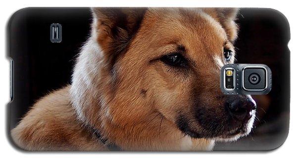 Mr. Charlie Galaxy S5 Case