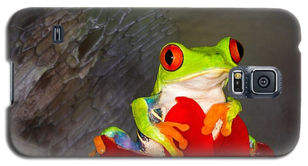 Mr. Curious Galaxy S5 Case by Mary Lou Chmura