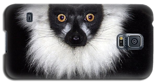 Galaxy S5 Case featuring the photograph Mr Lemur by Terri Waters