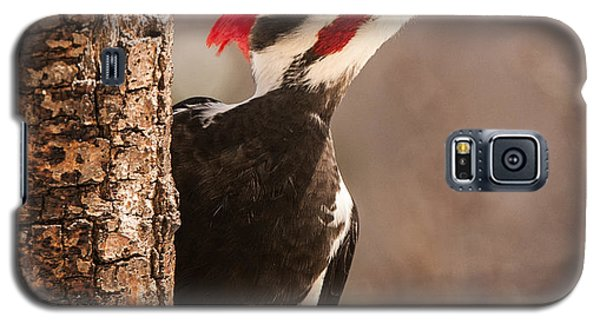 Mr. Pileated Galaxy S5 Case