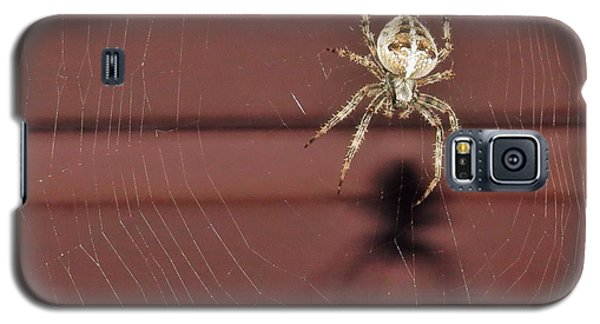 Galaxy S5 Case featuring the photograph Mr Spidey by Nikki McInnes