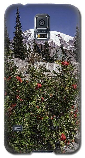 Mt Ash At Mt Rainier Galaxy S5 Case