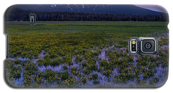 Galaxy S5 Case featuring the photograph Mt. Bachelor Twilight by Kevin Desrosiers