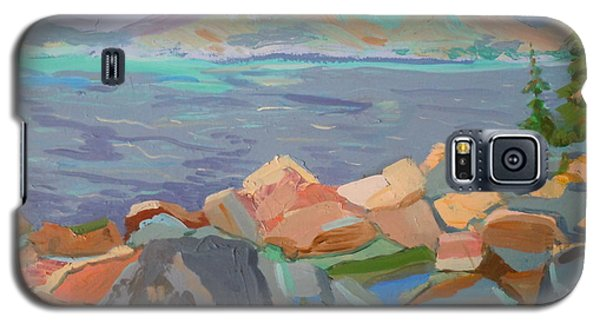 Galaxy S5 Case featuring the painting Mt. Desert From Schoodic Point by Francine Frank
