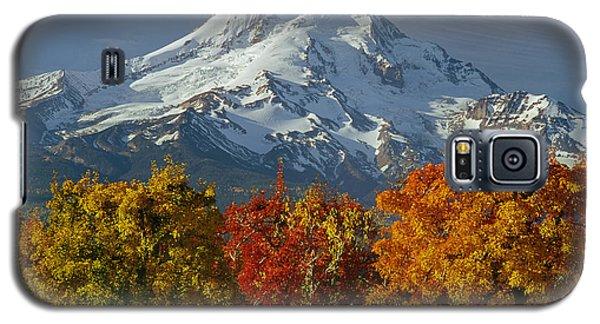 1m5117-mt. Hood In Autumn Galaxy S5 Case