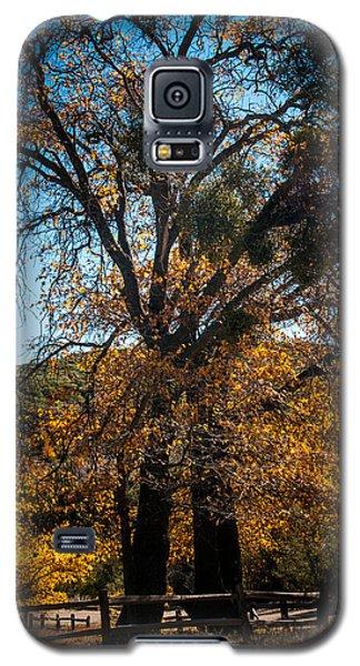 Mt Laguna Galaxy S5 Case by Mickey Clausen
