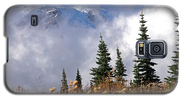 Mt Rainier Cloud Meadow Galaxy S5 Case by Scott Nelson