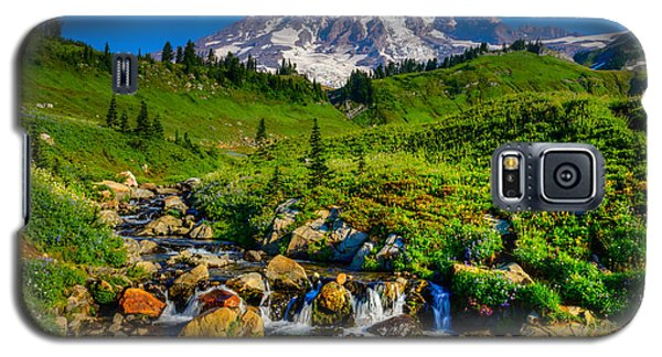 Mt. Rainier Stream Galaxy S5 Case