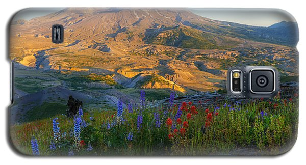 Mt. St. Helens Golden Hour Galaxy S5 Case by Ryan Manuel