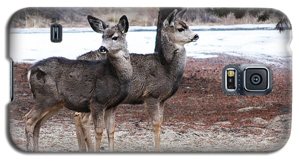 Galaxy S5 Case featuring the photograph Mule Deer Fawns by Jennifer Muller