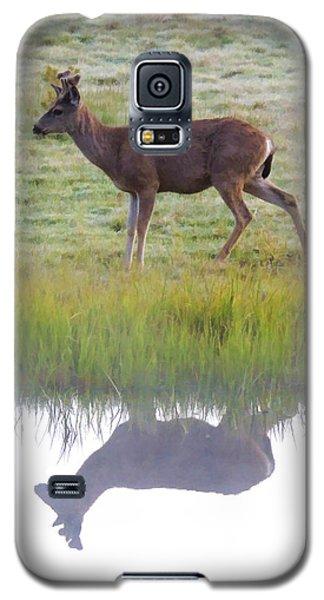 Mule Deer Reflection Galaxy S5 Case
