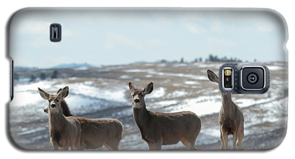 Mulies On A Mission Galaxy S5 Case