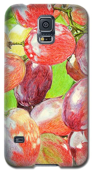 Multi Coloured Grapes Galaxy S5 Case