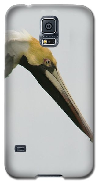 Multi-tasker Galaxy S5 Case
