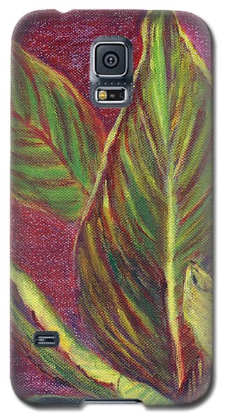 Multicolor Leaves Galaxy S5 Case