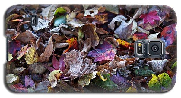 Multicolored Autumn Leaves Galaxy S5 Case