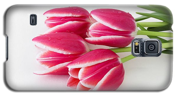 Galaxy S5 Case featuring the photograph Multicolored Tulips by Anita Oakley