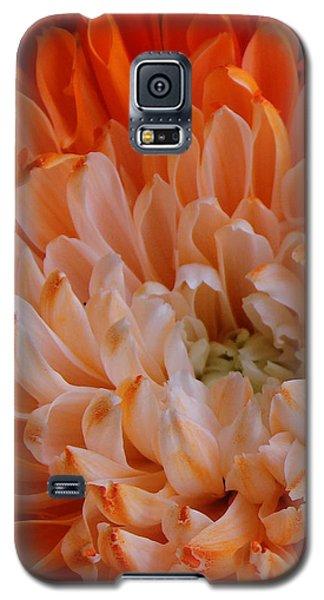 Mum On Fire Galaxy S5 Case