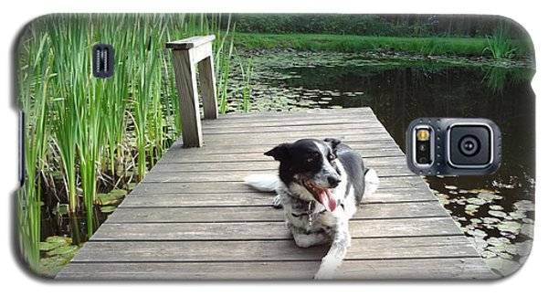 Galaxy S5 Case featuring the photograph Mundee On The Dock by Michael Porchik