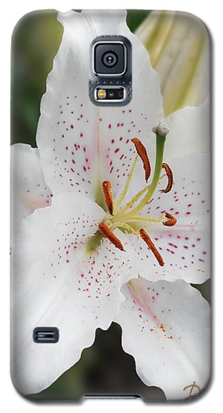 Muscadet Lily Galaxy S5 Case