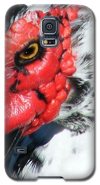 Galaxy S5 Case featuring the photograph Muscovy by Lizi Beard-Ward