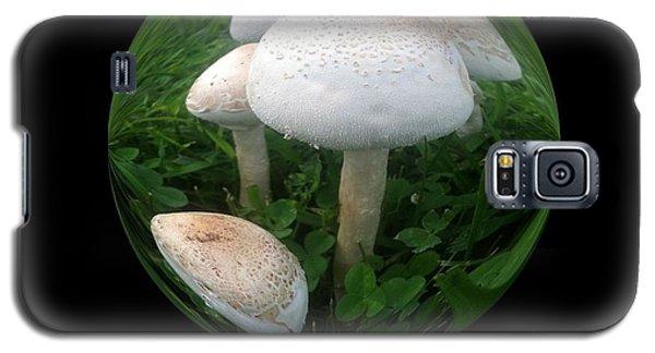 Mushroom Art Collection 4 By Saribelle Rodriguez Galaxy S5 Case by Saribelle Rodriguez