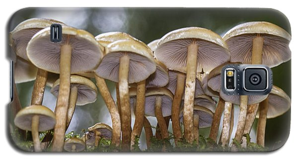 Mushroom Forest Galaxy S5 Case by Sonya Lang