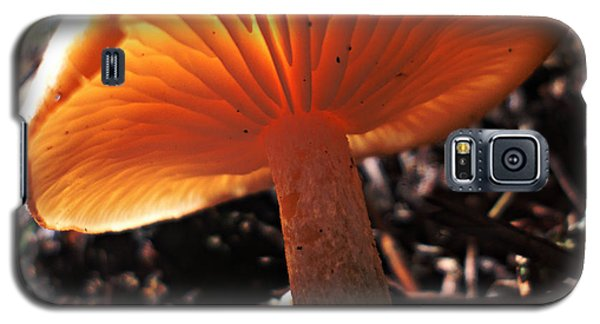 Galaxy S5 Case featuring the photograph Mushroom by Janice Westerberg