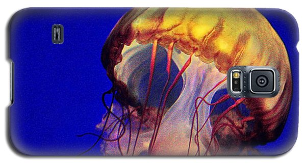 Mushroom Jelly Fish Galaxy S5 Case