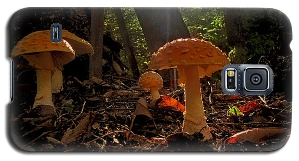 Galaxy S5 Case featuring the photograph Mushroom Morning by GJ Blackman