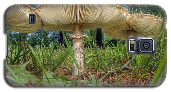 Mushroom Trio Galaxy S5 Case by Martin Konopacki