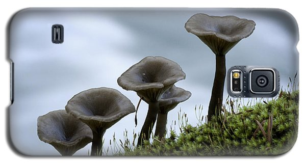 Galaxy S5 Case featuring the photograph Mushrooms On Moss by Betty Depee
