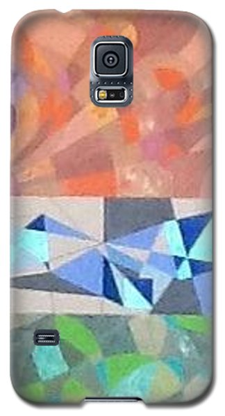 Music  Lgbt Variations Galaxy S5 Case by Hang Ho