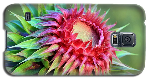Galaxy S5 Case featuring the photograph Musk Thistle by Teresa Zieba