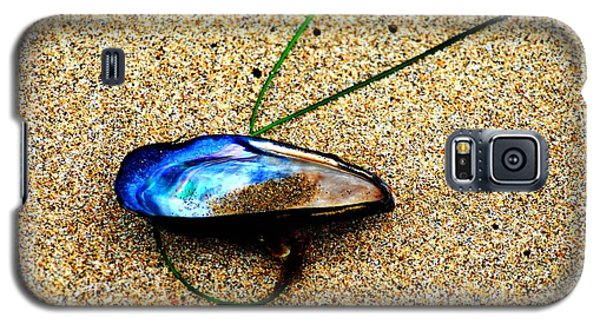 Galaxy S5 Case featuring the photograph Mussel Shell And Seagrass by Bob Wall