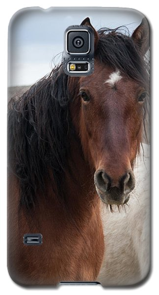 Mustang Beauty  Galaxy S5 Case