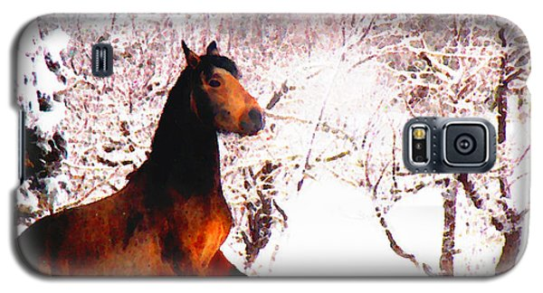 Galaxy S5 Case featuring the photograph Mustang In April Snow by Anastasia Savage Ealy