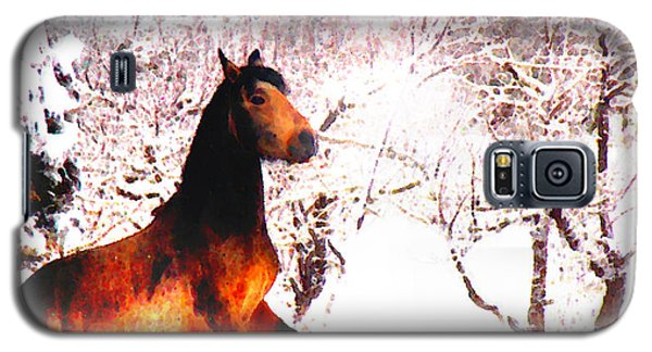 Galaxy S5 Case featuring the photograph Mustang In April Snow Luminosa by Anastasia Savage Ealy