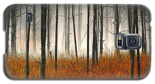Mute Dog Forest Pano Galaxy S5 Case by Clare VanderVeen