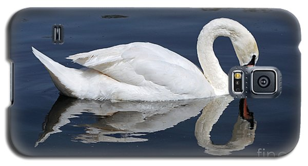 Mute Swan Kissing Its Reflection Galaxy S5 Case