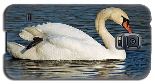 Galaxy S5 Case featuring the photograph Mute Swan Resting by Olivia Hardwicke