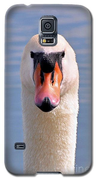 Mute Swan Staring Galaxy S5 Case