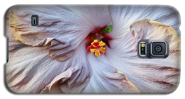Muted Hibiscus Galaxy S5 Case by Cindy Manero