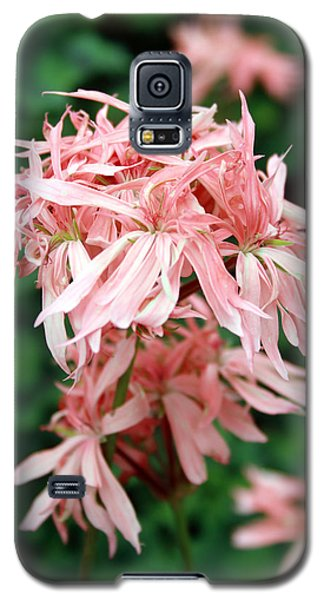 Muted Pink II Galaxy S5 Case