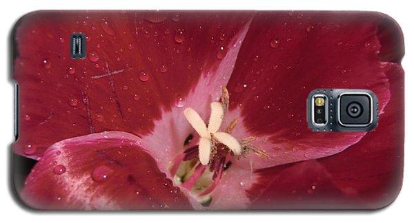 My Beauty Galaxy S5 Case