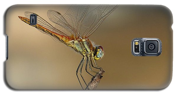 Galaxy S5 Case featuring the photograph My Best Dragonfly by Janina  Suuronen