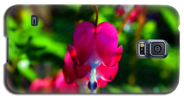 Galaxy S5 Case featuring the photograph My Bleeding Heart by Peggy Franz