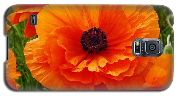 Galaxy S5 Case featuring the photograph My Bright And Shining Poppy by Jeanette Oberholtzer