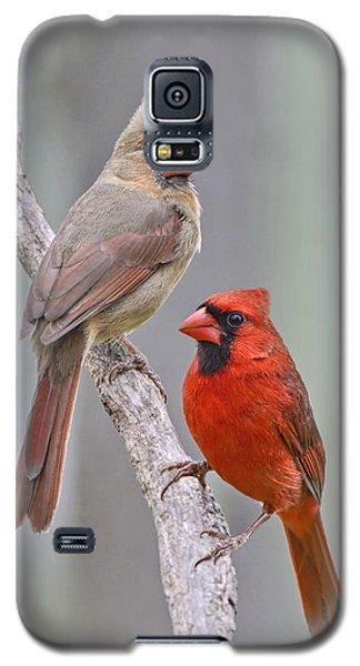 My Cardinal Neighbors Galaxy S5 Case